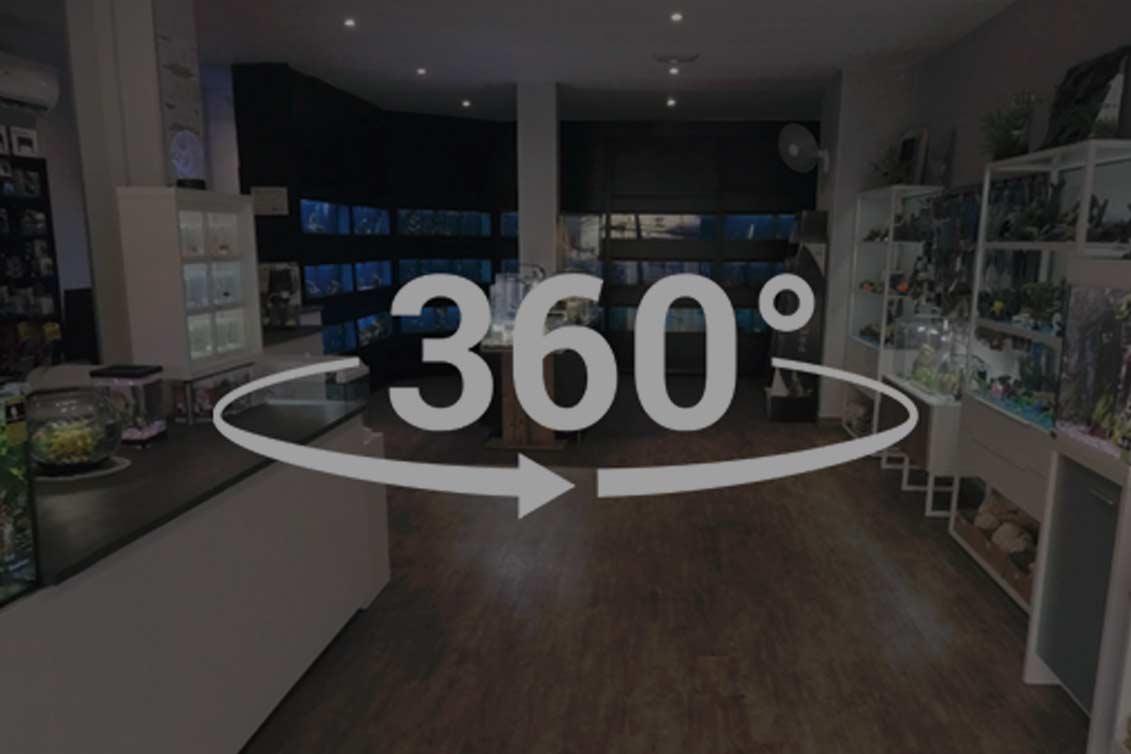 Producción 360